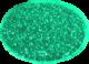 ABA oceanspray glitter