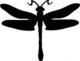 1052-dragonfly-stencil.jpg