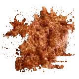 ABA Mica Powder 10g - Bronze Goddess