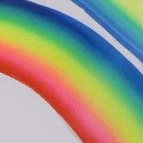 Face Paint World 1 inch one-stroke face paint Rainbow Lorikeet