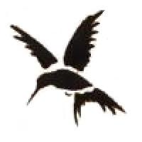 Glitter Tattoo Stencil - Hummingbird