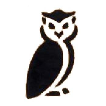Glitter Tattoo Stencil - Owl